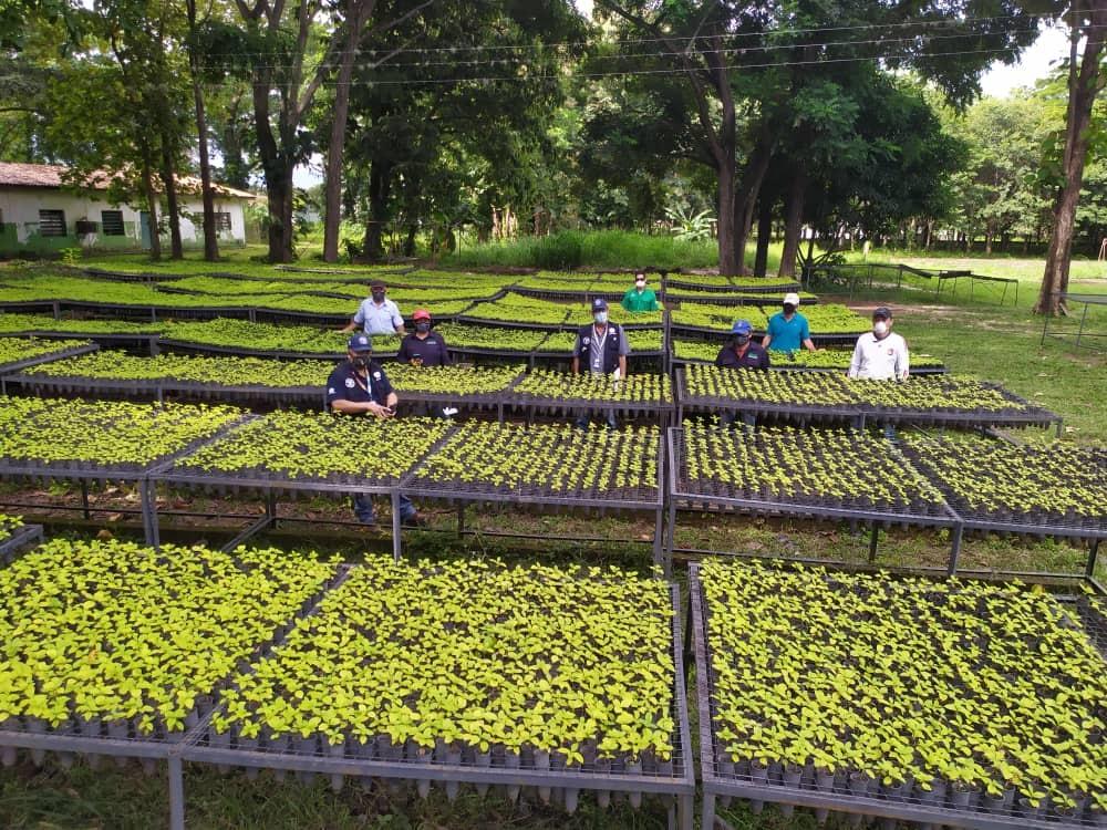 Conservación y gestión ambiental FAO - UNCT 2020